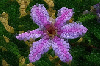 Photograph - Clematis by Kathryn Meyer