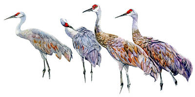 Painting - 4 Cranes by Vicky Lilla