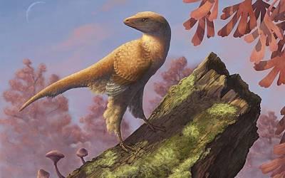 Animals Digital Art - Dinosaur by Super Lovely