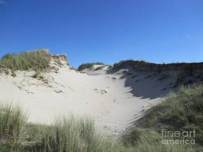 Photograph - Dunes In The Noordhollandse Duinreservaat by Chani Demuijlder
