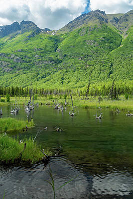 Eagle River Nature Center Art Print