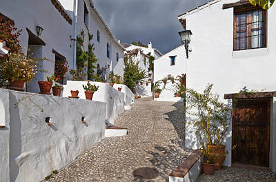 Cobbled Street Photograph - El Acebuchal, The Lost Village Or Ghost by Panoramic Images