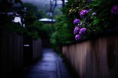Floral Digital Art - Fence by Super Lovely