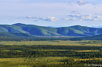Forested Rolling Hills, Alaska, Usa Series Art Print by Soni Macy