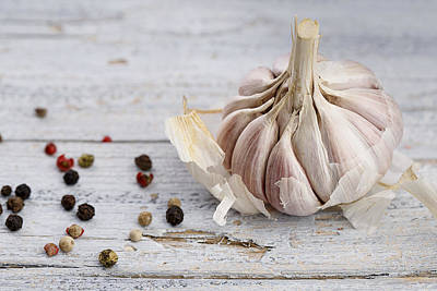 Bulb Photograph - Garlic by Nailia Schwarz