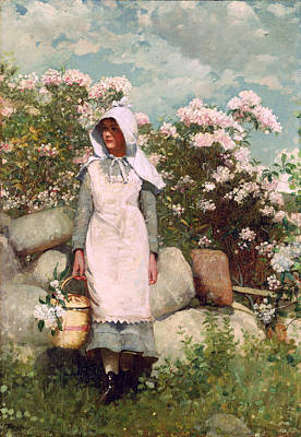 Winslow Homer Painting - Girl And Laurel by Winslow Homer