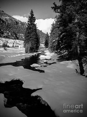Photograph - Gore Creek by Franz Zarda