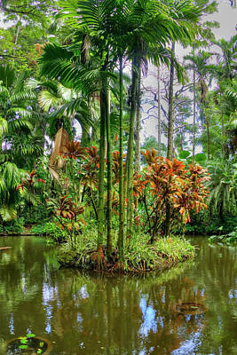 Photograph - Hawaii Botanical Garden by Joe  Palermo