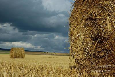 Hay Bales In Harvested Corn Field Art Print by Sami Sarkis