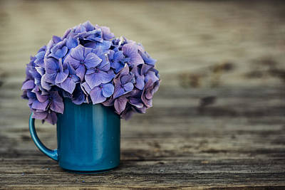 Still Life Photograph - Hortensia Flowers by Nailia Schwarz
