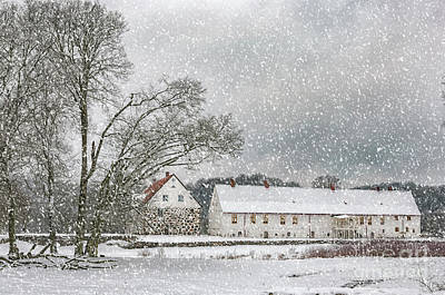 Red Roof Photograph - Hovdala Castle In Winter by Antony McAulay