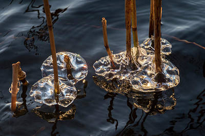 Photograph - Ice Art by Michael Mogensen