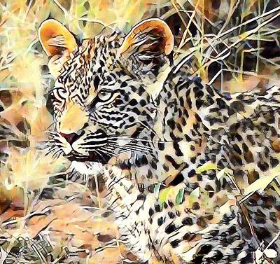 Photograph - Leopard Cub by Gini Moore