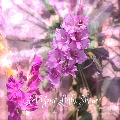 Pink Photograph - Let Your Light Shine by Carol Groenen