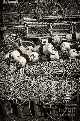 Netting Photograph - Lobster Traps by Elena Elisseeva