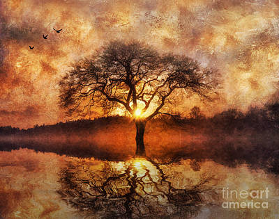 Agriculture Digital Art - Lone Tree by Ian Mitchell