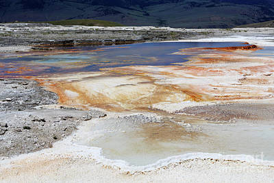 Mammoth Hot Springs Upper Terraces In Yellowstone National Park Art Print by Louise Heusinkveld