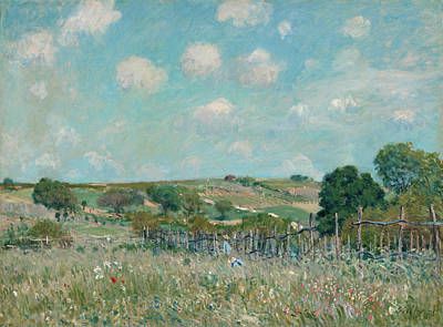 Agricultural Painting - Meadow by Alfred Sisley
