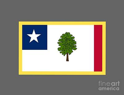 Mississippi Secession Flag Art Print by Frederick Holiday
