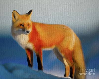 Mammals Royalty-Free and Rights-Managed Images - Mr Fox by Sarah Kirk