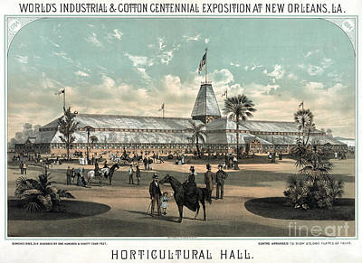 Drawing - New Orleans, Fair, 1884.  by Granger