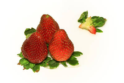Photograph - 4... No... 3 Strawberries by Evelina Kremsdorf