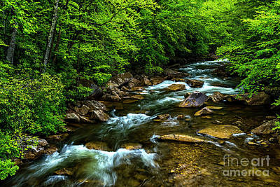 West Fork Photograph - North Fork Cherry River by Thomas R Fletcher