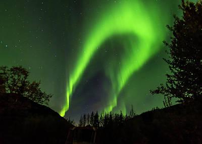Northern Lights, Aurora Borealis At Kantishna Lodge In Denali National Park Art Print by Brenda Jacobs