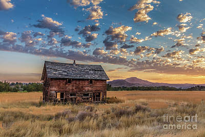 Photograph - Old Homestead  by Robert Bales