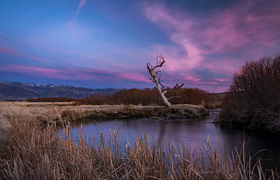 Owens River Photograph - Owens River Sunset by Cat Connor