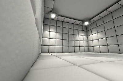 Padded Cell Art Print by Allan Swart