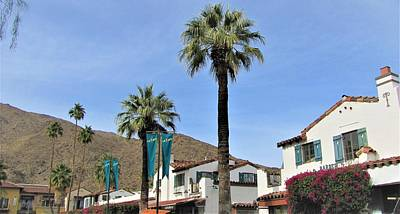 Photograph - Palm Springs by Lisa Dunn