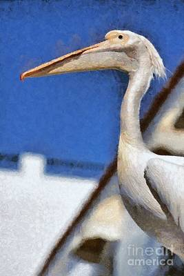 Feathers Painting - Pelican by George Atsametakis