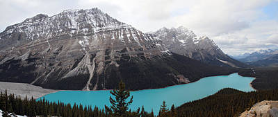 Turquoise Photograph - Peyto Lake Banff National Park by Pierre Leclerc Photography