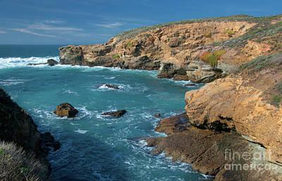 Photograph - Point Lobos by Glenn Franco Simmons