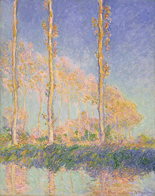 Painting - Poplars by Claude Monet