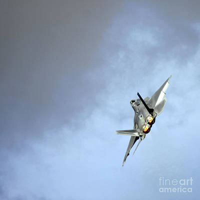 Airshow Photograph - Raptor by Angel  Tarantella