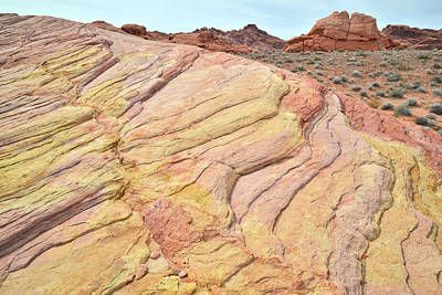 Print featuring the photograph Ripples Of Color In Valley Of Fire by Ray Mathis