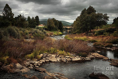 Postcards Photograph - Rural Landscape by Carlos Caetano
