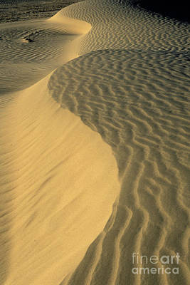 Photograph - Sand Dunes by Jim And Emily Bush