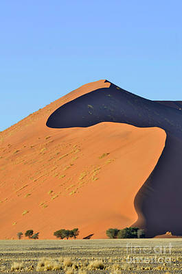 Photograph - Sand Dunes In Sossusvlei by Francesco Tomasinelli