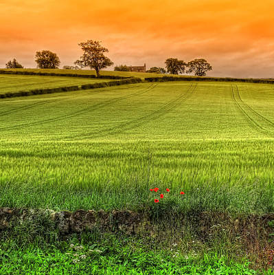 Photograph - Scottish Scenery by Jeremy Lavender Photography