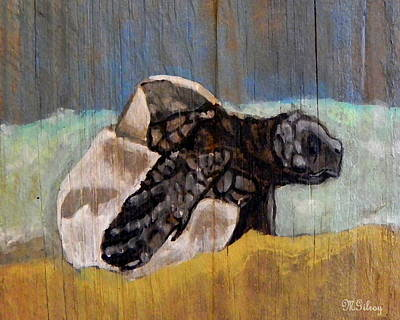Ocean Turtle Mixed Media - Sea Turtle Baby by W Gilroy