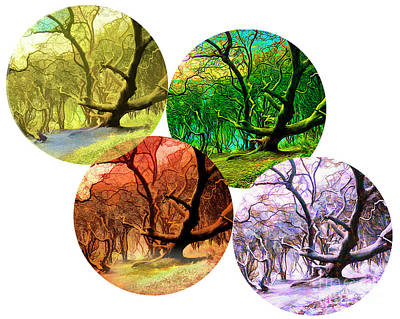 Digital Art - 4 Seasons by Edmund Nagele