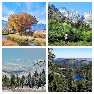 Photograph - Seasons by Marilyn Diaz