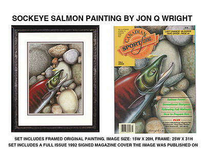 Salmon Painting - Sockeye Salmon by Jon Q Wright