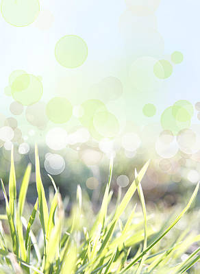 Sun Rays Digital Art - Spring Background by Les Cunliffe