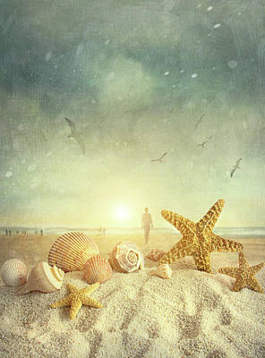 Conch Photograph - Starfish And Seashells  At The Beach by Sandra Cunningham