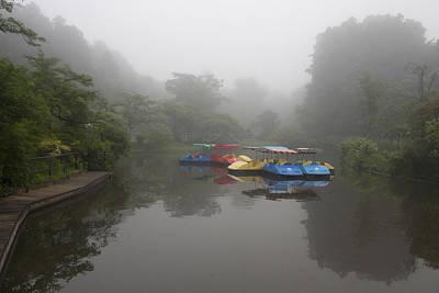 Photograph - Stillness by Masami Iida