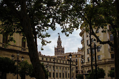 Photograph - Streets Of Seville - Giralda From Plaza Nueva by Andrea Mazzocchetti